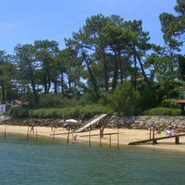 Wo essen Bassin d'Arcachon